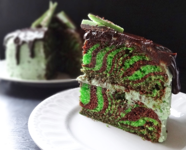 mint choc chip chocolate zebra cake